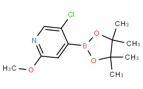 5-Chloro-2-methoxypyridine-4-boronic acid pinacol ester
