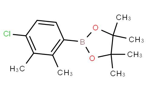 4-Chloro-2,3-dimethylphenylboronic acid pinacol ester