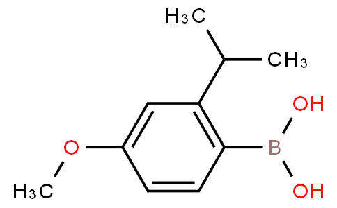 2-Isopropyl-4-methoxyphenyl boronic acid