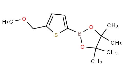 2-(Methoxymethyl)-thiophene-5-boronic acid pinacol ester