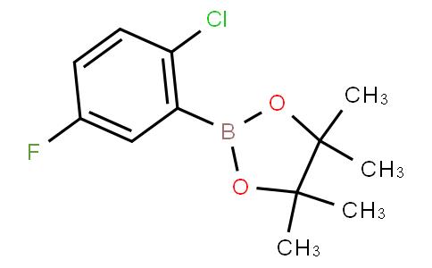 2-Chloro-5-fluorophenylboronic acid pinacol ester